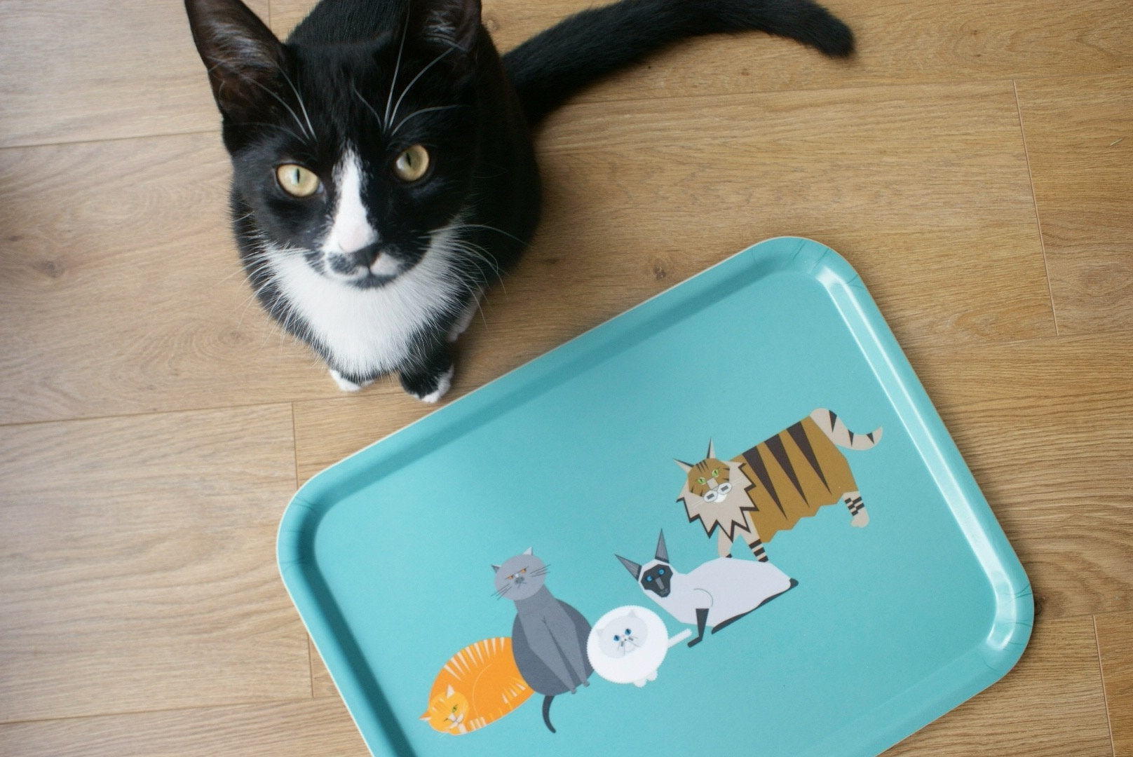 Large Cat characters eco wooden tray