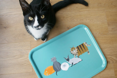 Cat Characters Tray (Large) - Slight Seconds