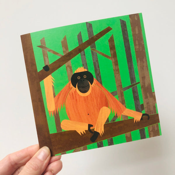 Pack of 6 Monkey Greetings Cards