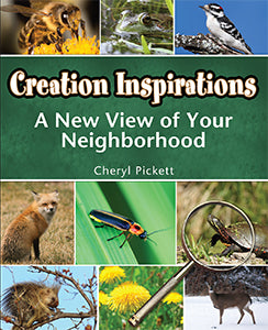 Creation Inspirations: A New View of Your Neighborhood