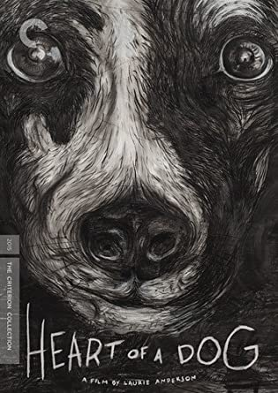 Heart Of A Dog (#846) USED DVD