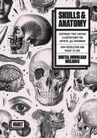 Skulls and Anatomy