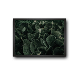 Bowl Leaves Positive Nature Poster Frame