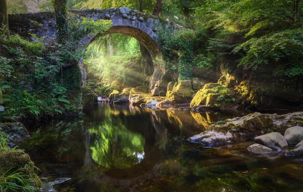 Foley's Bridge, Tollymore, Co Down