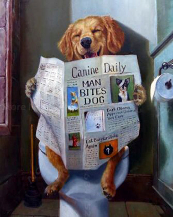 diamond-painting-hond-wc-krant-