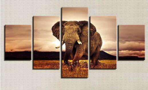 diamond painting vijfluik olifant