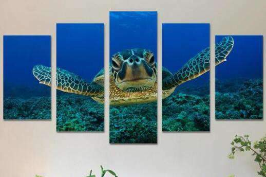 diamond painting vijfluik schildpad