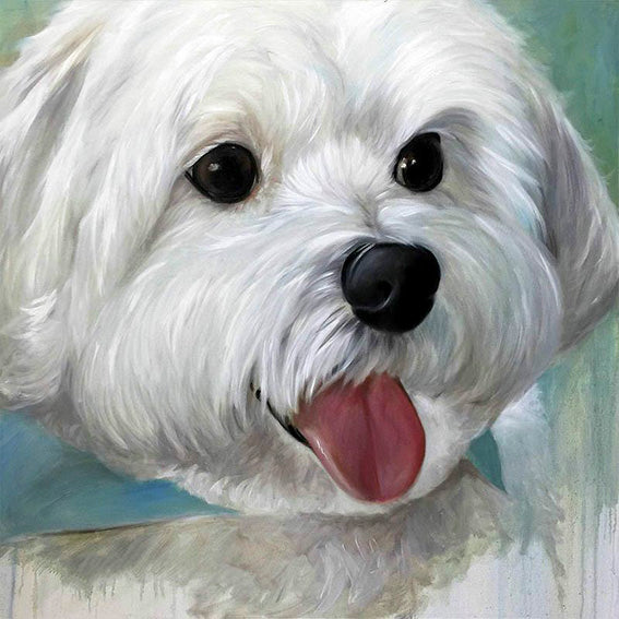 diamond painting hond wit