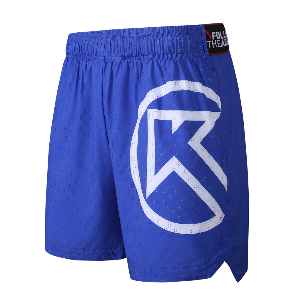 Men's Loose Fit Running Shorts Friesian Blue
