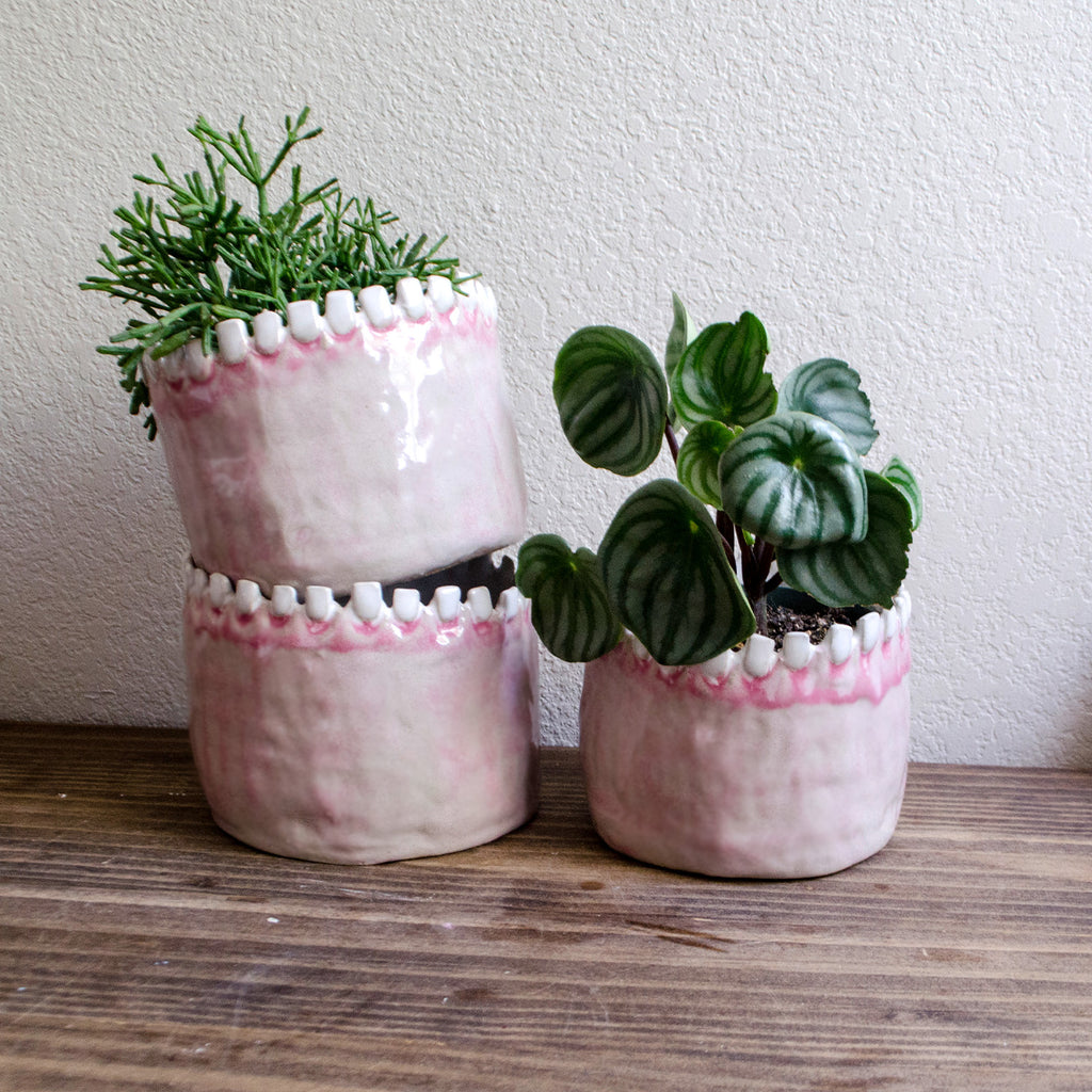 Large Round Tooth Planter