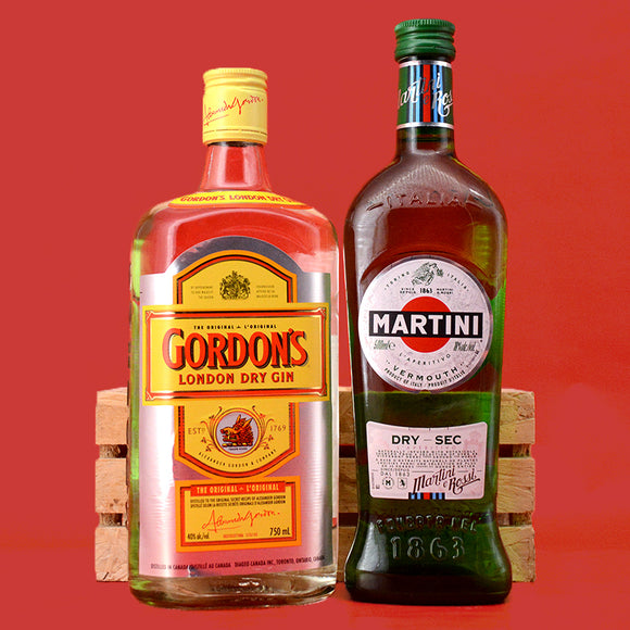 MARTINI COCKTAIL KIT