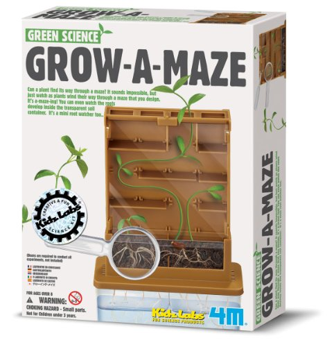 4M Green Science Grow a Maze Kit