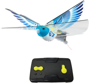 eBird RC Flying Bird