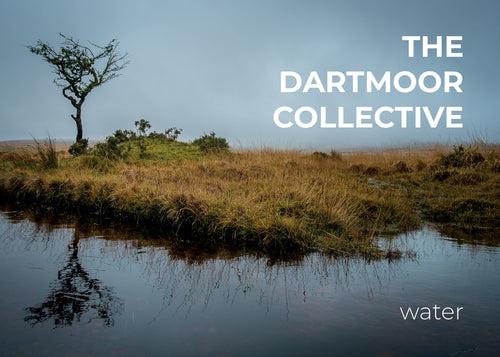 Dartmoor Collective 'Water' zine front cover photograph by Simon Blackbourn of a lone hawthorn tree at Scorhill, Dartmoor
