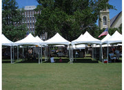 10x10 high peak frame tent.  Great for festivals, parties and special events
