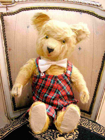 Diem Teddy German Bear from the 1930s
