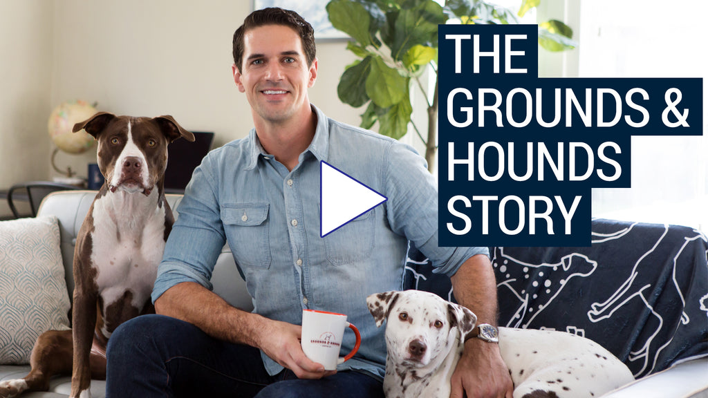 The Grounds & Hounds Story