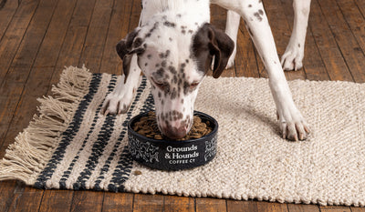 """More Please"" Dog Bowl"