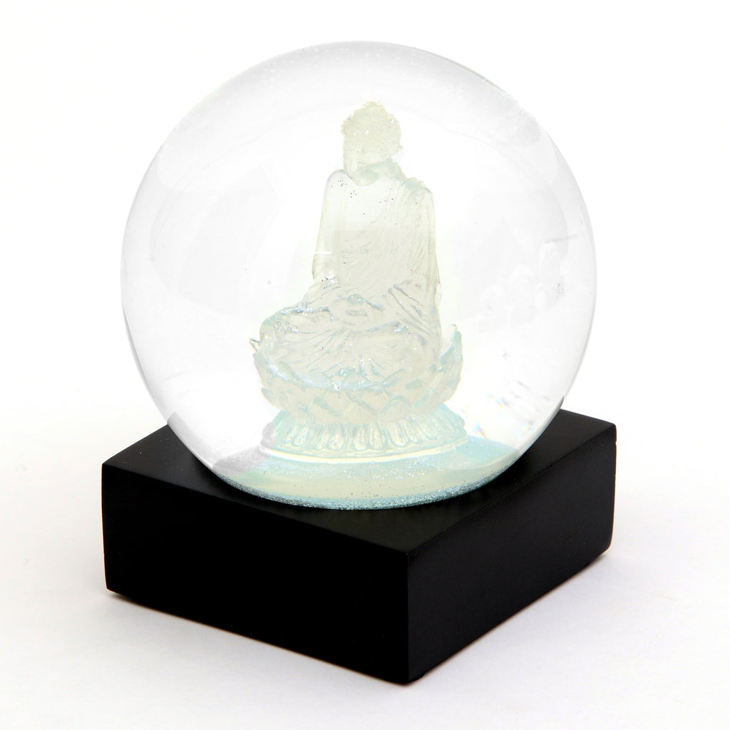 Non-traditional Snow Globes
