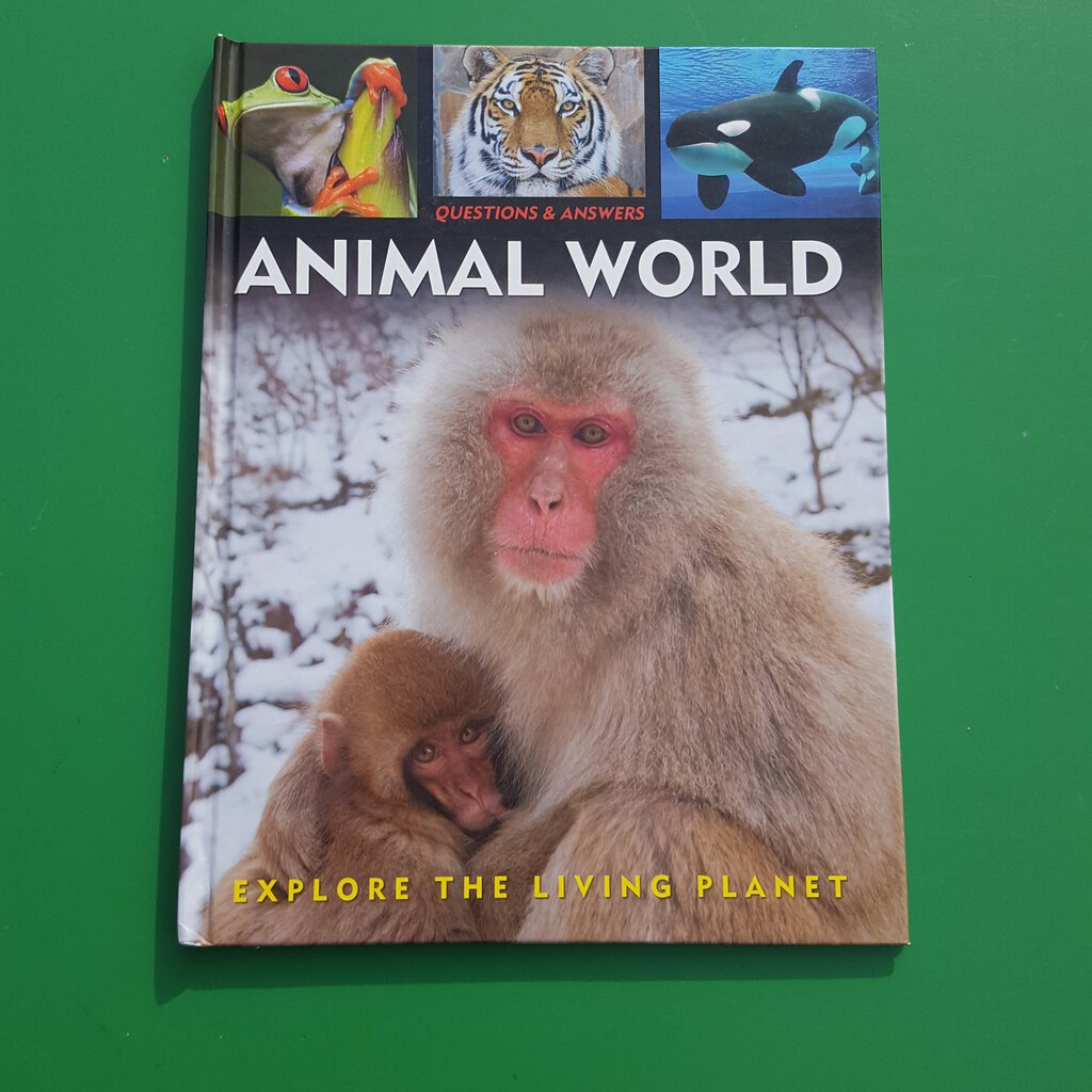 Animal world-educational