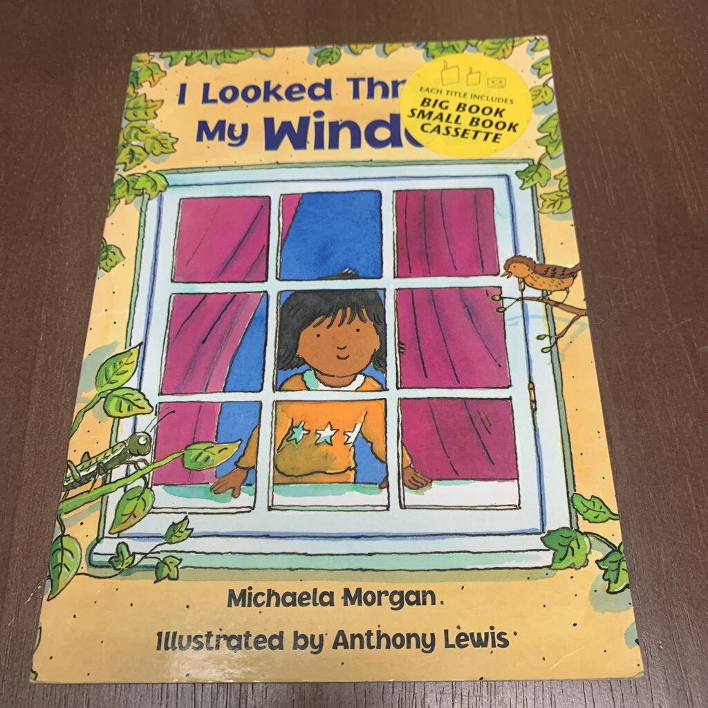 I Looked Through My Window-paperback