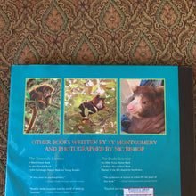 Load image into Gallery viewer, Quest for the tree kangaroo (Sy Montgomery) -hardcover