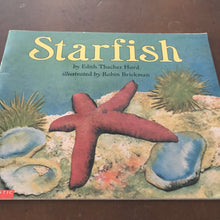 Load image into Gallery viewer, Starfish -educational