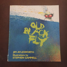 Load image into Gallery viewer, Old Black Fly (An Owlet Book) (Jim Aylesworth) - paperback