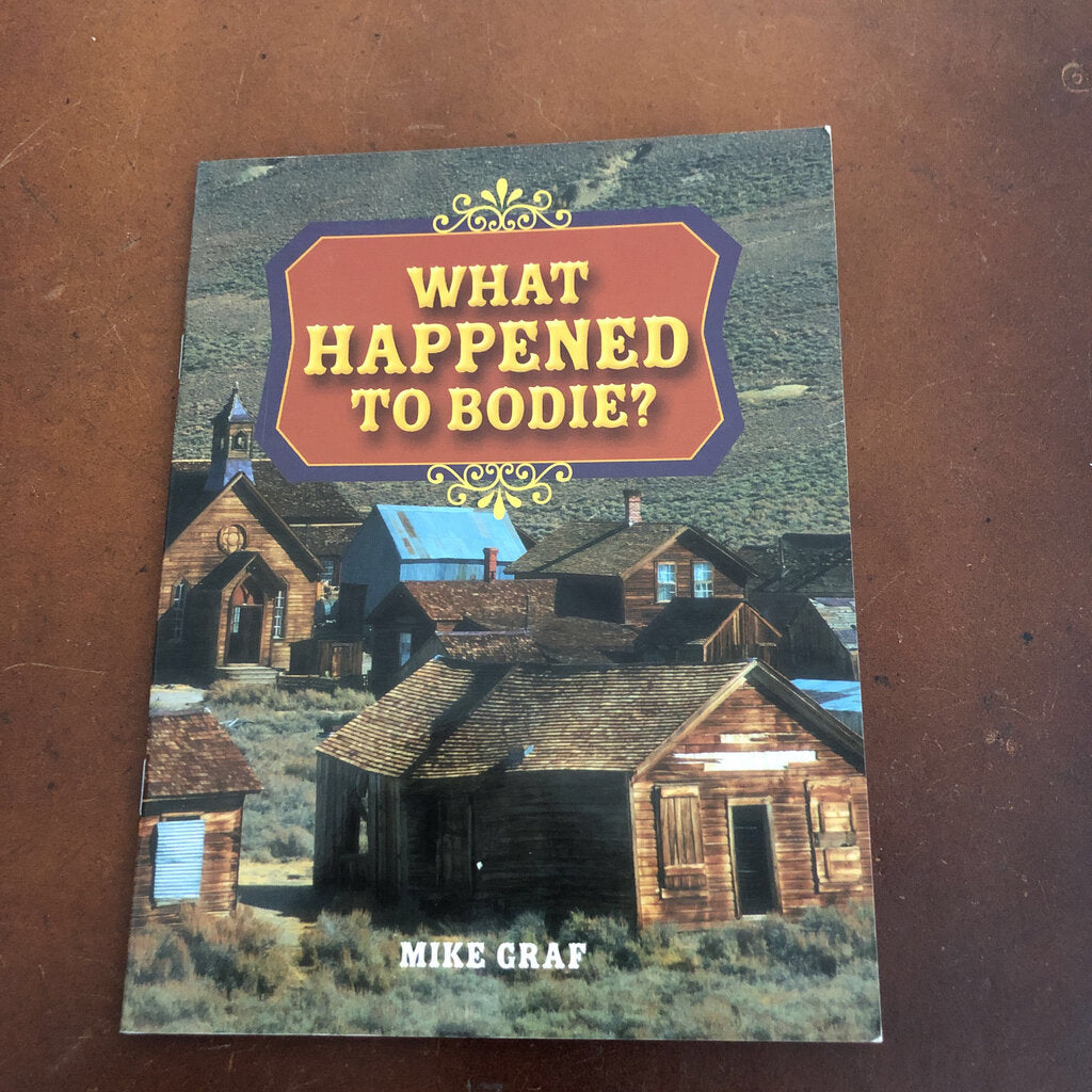 what happened to bodie? - reader