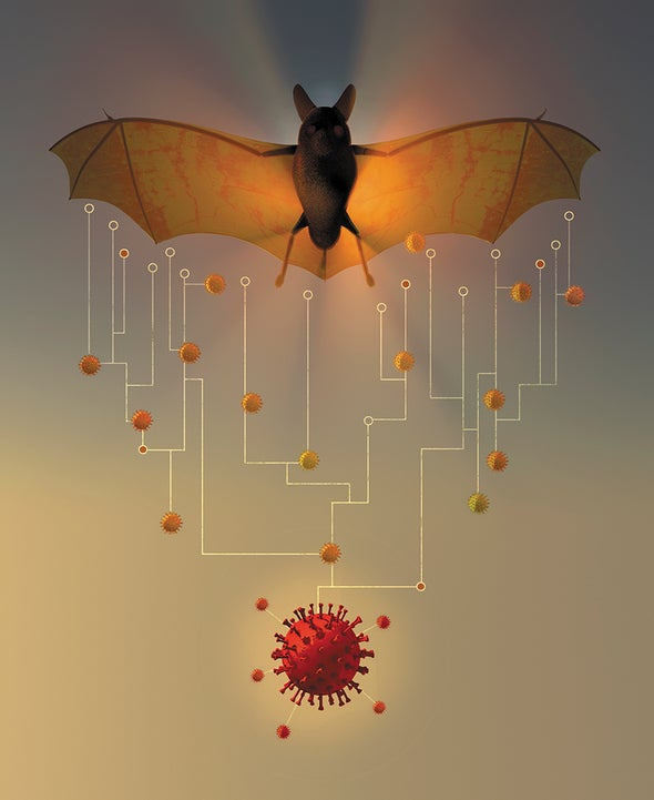 How China's 'Bat Woman' Hunted Down Viruses from SARS to the New Coronavirus