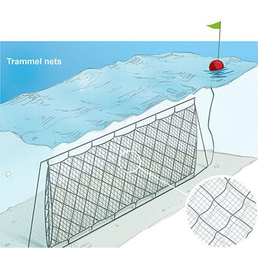 "Ready Rigged Trammel Nets 0.40 x 4-3/4"" x 24"" Walls 4ft Deep"