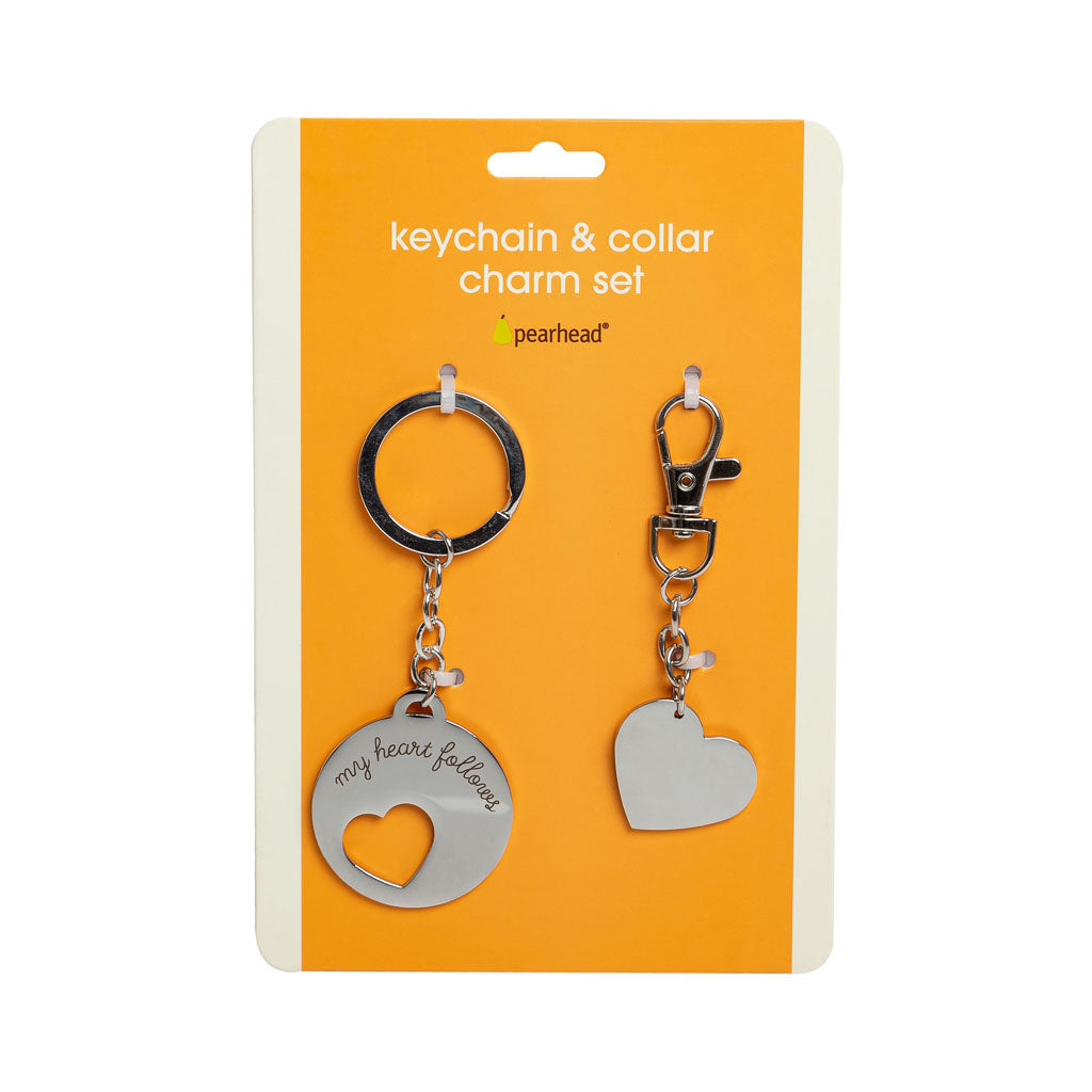 Matching Pet ID Tag and Keychain