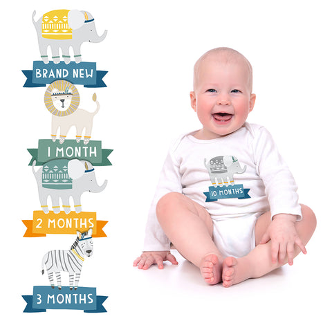 pearhead's first year belly stickers