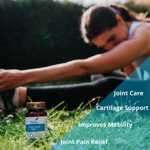 Load image into Gallery viewer, Joint Care Pro + 30 capsules