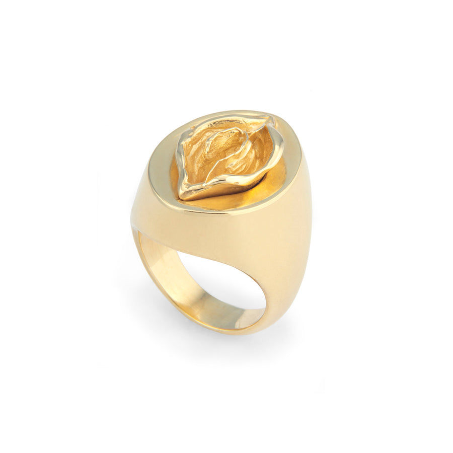 Audre Ring Gold Plated