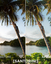 Load image into Gallery viewer, Tropical Summer Photography Collection 2018: 15 Presets