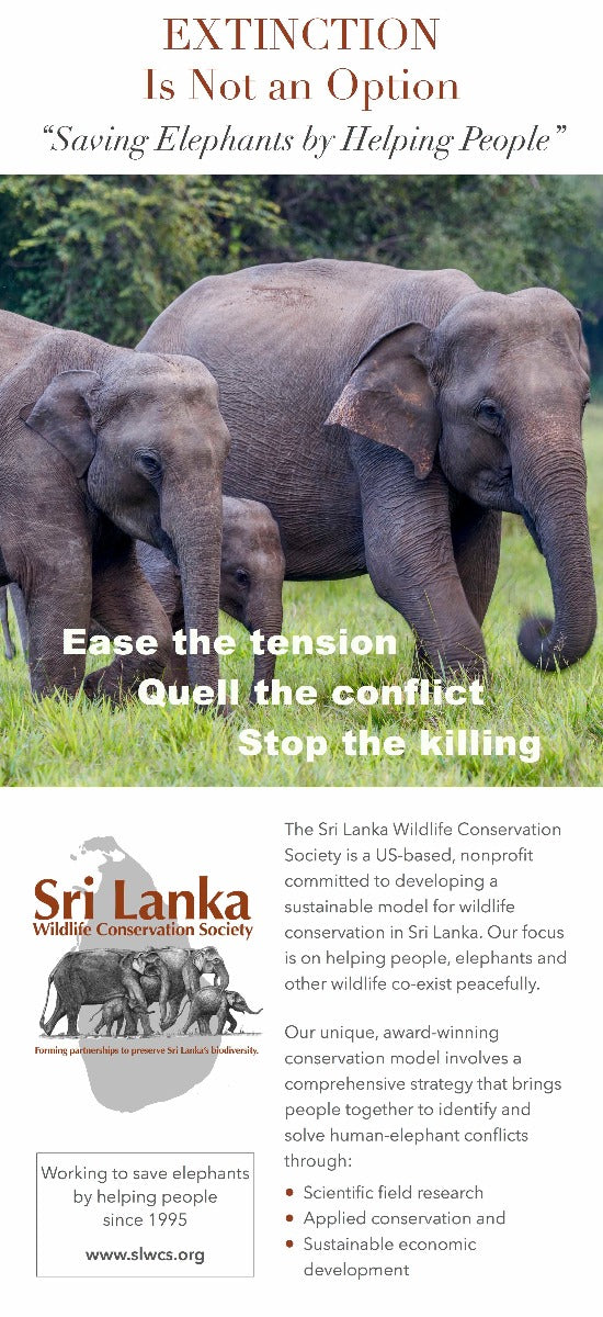 Elephants walking in Sri Lanka, text describing what the Sri Lankan Wildlife Society does to help