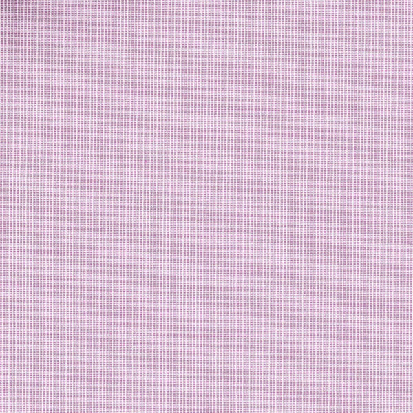 PURPLE.SOLID.PLAIN FM33326.88
