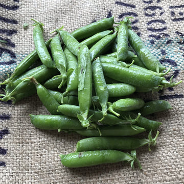 Elmridge - Shelling Peas (1/2LB)