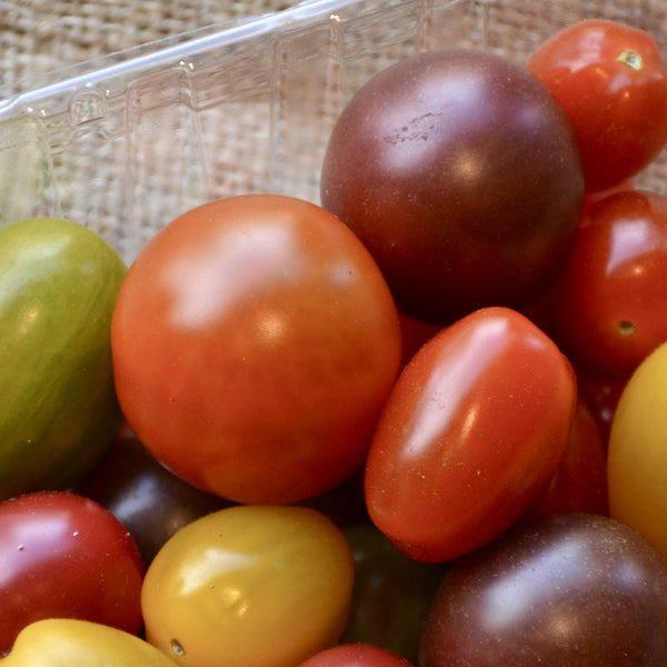 Stokdijk Greenhouse - Cherry Tomatoes (Pint)