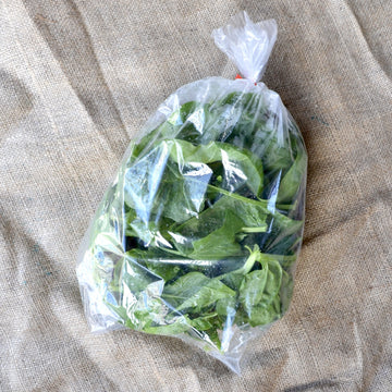 Riverview Herbs - Spinach (ea)
