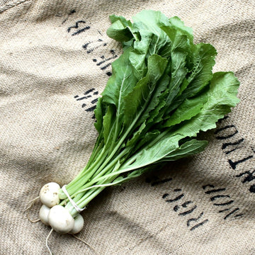 Taproot Farms - Organic Spring Turnips (ea)