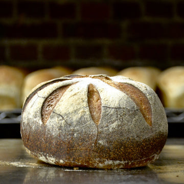 Local Source - Sourdough Boule (ea)