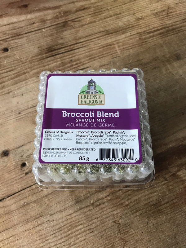Greens of Haligonia - Broccoli Sprouts (ea)