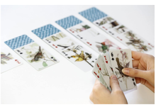 Load image into Gallery viewer, 3-D Bird Playing Cards Game