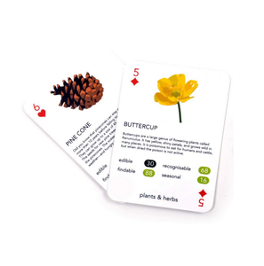 Foragers Playing Cards Game