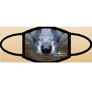 CuriOdyssey Gray Fox ADULT Face Mask