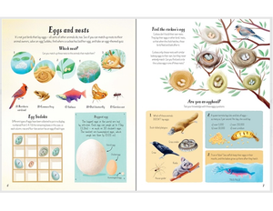 Write In Nature Activity Book