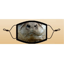 Load image into Gallery viewer, CuriOdyssey River Otter Adult/Youth Face Mask