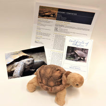 Load image into Gallery viewer, Adopt a Desert Tortoise